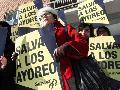 Protestarán en Madrid ante constructora por talar tierra de indígenas