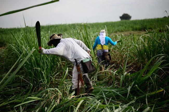Colombia: Minga por ...