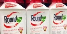 Francia proh�be la venta libre del Roundup, herbicida estrella de Monsanto