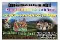 Comunidad Arco Iris invita al IV Encuentro de Sikuris en el Corralón de Floresta