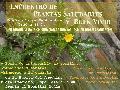 Encuentro de Plantas Saludable y Buen Vivir / domingo 27 de septiembre