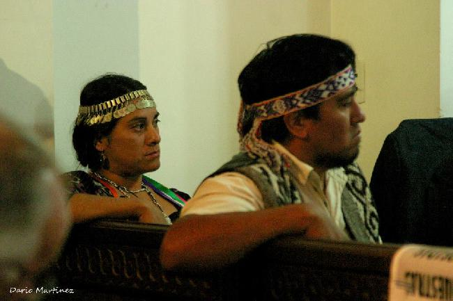 Mapuche enfrentan du...