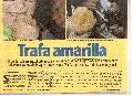 Per�: Investigar a Susana Villaran por entrega de peajes de Lima a mafia brasile�a