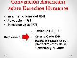 Per�: Jurado Nacional de Elecciones contra Convenci�n Americana de Derechos Humanos