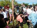 Bosque de la Memoria - Rosario - Plantaci�n de �rboles - 2016 - Memoria, Verdad y Justicia