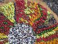 La defensa de las semillas en Am�rica Latina: perspectivas y retos