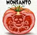 Marcha Mundial contra Monsanto: 20 ciudades argentinas pidieron su erradicación