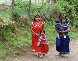 Ind�genas paname�os emigran de sus tierras en busca de oportunidades