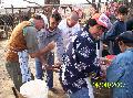 Productores aplican prácticas de elaboración de chacinados