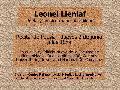Recital de Poesía de Leonel Lienlaf: poeta y músico mapuche