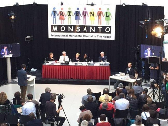 Monsanto en el banqu...