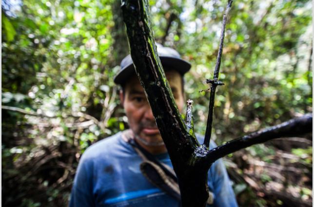 Perú: El levantamien...