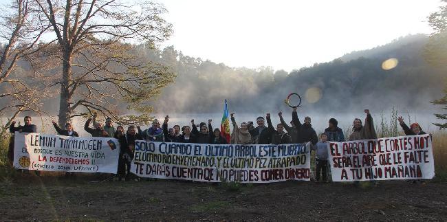 Fotos: Mapuches llev...