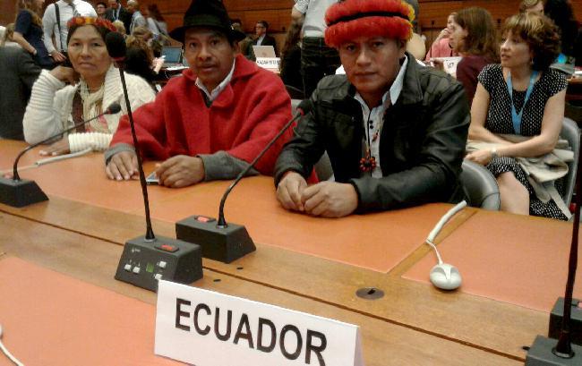 Ecuador: Organizacio...