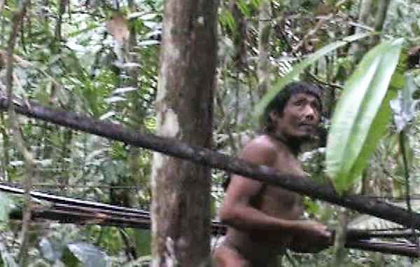 Brasil: Descubren pl...