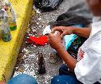 Medios revelan que derecha venezolana emplea niños pobres en construcción de bombas