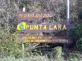Sobre la situación del desmonte en la Reserva de Punta Lara