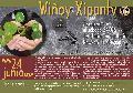 Wiñoy Xipantv: Te esperamos el sábado 24/06 en Territorio Comunitario