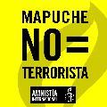 Amnesty llega este viernes preocupado por violencia contra mapuche de Zonal Xawvnko