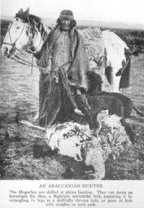 Mapuches, Siglo XIX....
