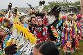 La tribu Saginaw Chippewa recupera restos humanos ancestrales