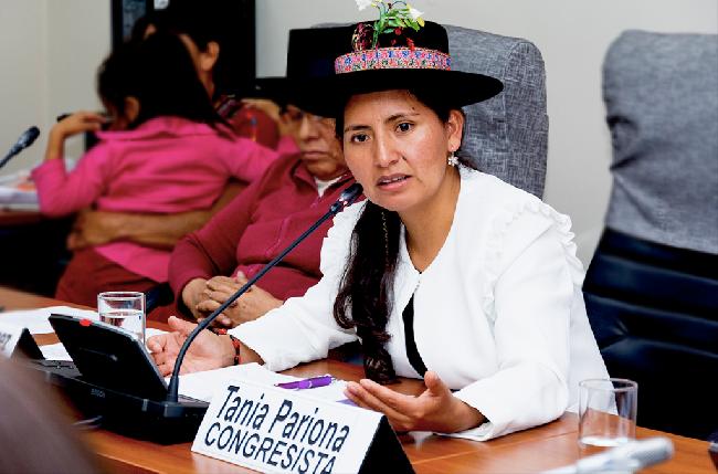 Foto: Congreso Perú...