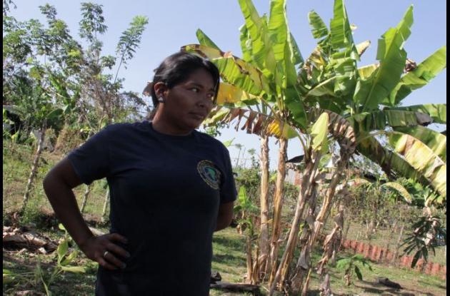 Colombia: El cabildo...