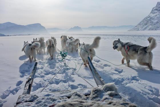 La sabiduría inuit e...