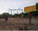 Jornada de restauración-señalización del bosque nativo protegido