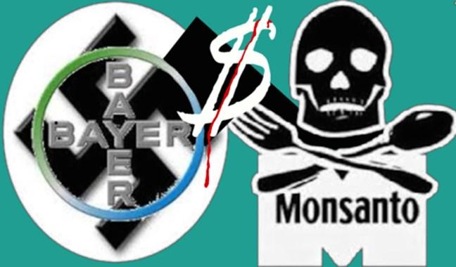 La fusión Bayer-Mons...
