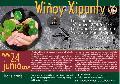 Wiñoy Xipantv en Newken: Vuelta del Año